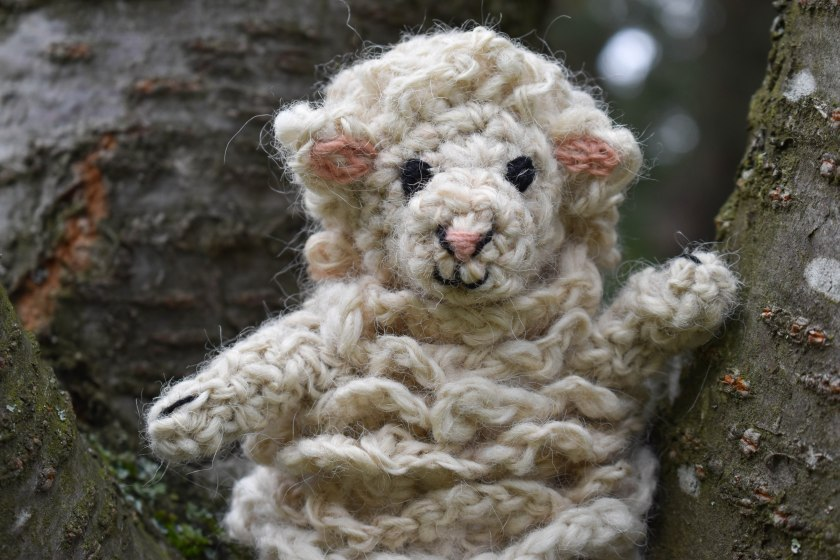 hackovana-ovce-matyldina-stodola
